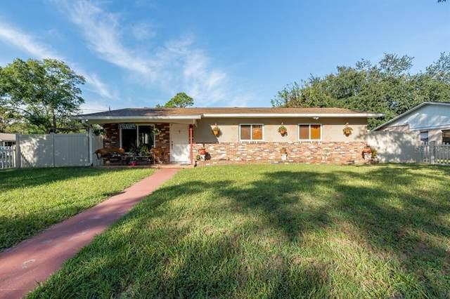 10702 N Seminole Avenue, Tampa, FL 33612 (MLS #T3333606) :: The Nathan Bangs Group