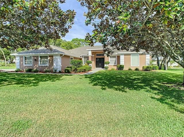 9135 Tarleton Circle, Spring Hill, FL 34613 (MLS #T3333645) :: Everlane Realty