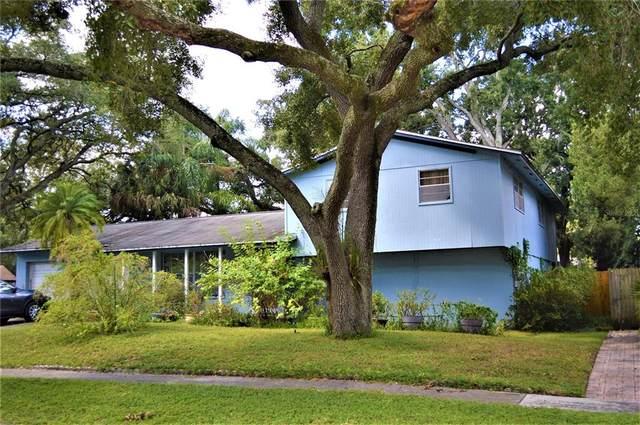 8307 W Pocahontas Avenue, Tampa, FL 33615 (MLS #T3333689) :: Lockhart & Walseth Team, Realtors