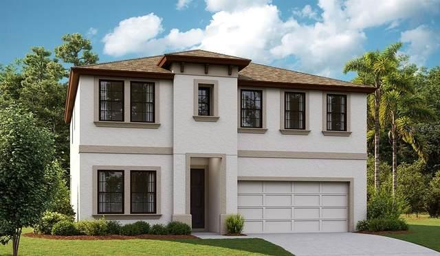 5534 Del Coronado Drive, Apollo Beach, FL 33572 (MLS #T3333691) :: Team Turner