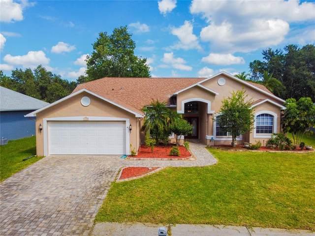 4800 Basswood Street, Land O Lakes, FL 34639 (MLS #T3333693) :: Cartwright Realty