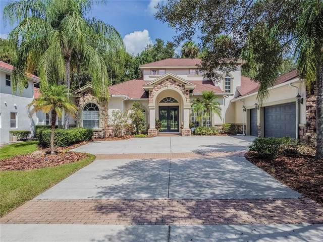 16303 Heathrow Drive, Tampa, FL 33647 (MLS #T3333702) :: McConnell and Associates