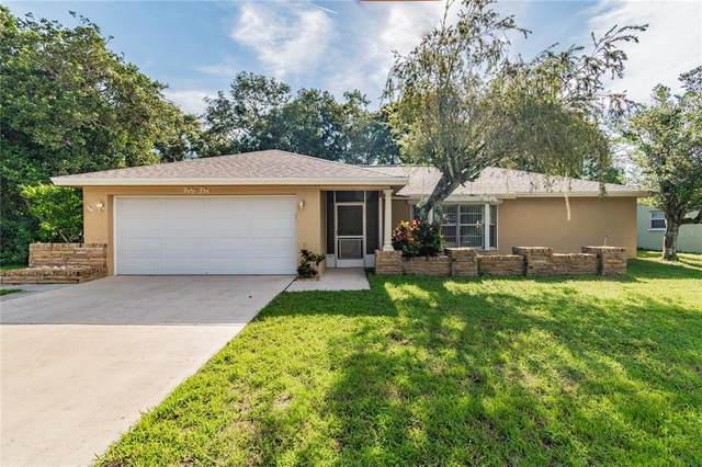45 Harbor Woods Circle, Safety Harbor, FL 34695 (MLS #T3333704) :: Cartwright Realty