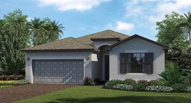 2072 Gardenia Avenue, Port Charlotte, FL 33953 (MLS #T3333762) :: Team Turner