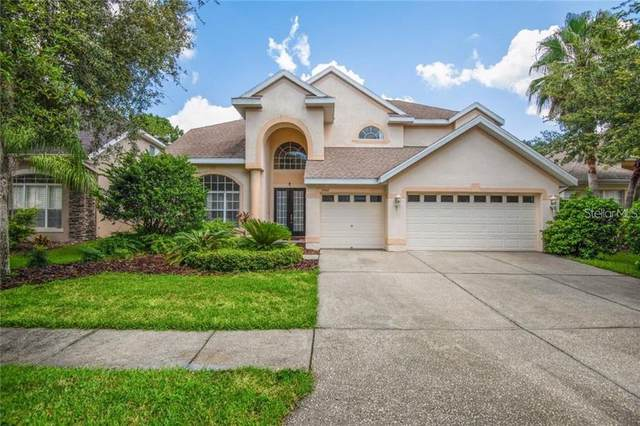 10160 Deercliff Drive, Tampa, FL 33647 (MLS #T3333767) :: McConnell and Associates