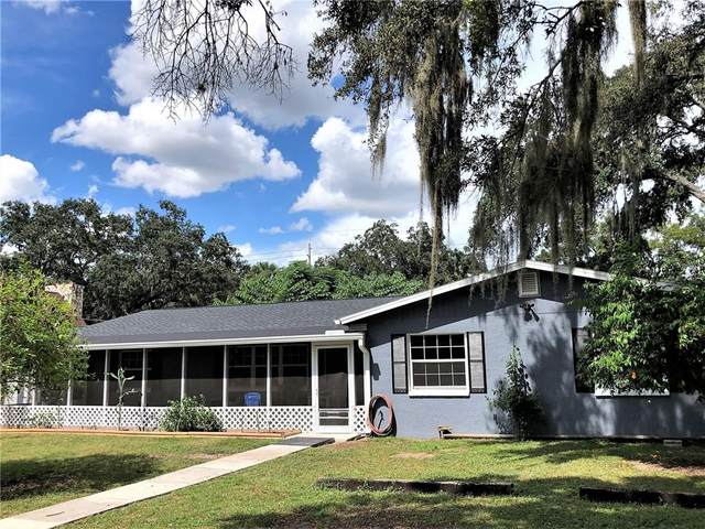 326 Mccolskey Avenue, Brandon, FL 33510 (MLS #T3333799) :: Keller Williams Realty Select