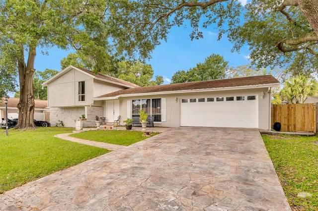7311 Brookview Circle, Tampa, FL 33634 (MLS #T3333802) :: The Heidi Schrock Team