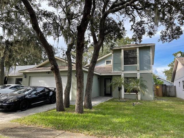 2530 Wrencrest Circle, Valrico, FL 33596 (MLS #T3333803) :: Team Bohannon