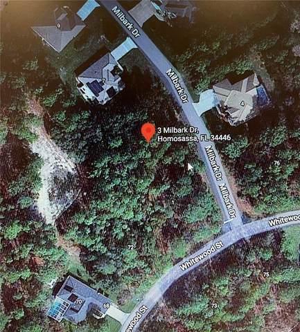3 Milbark Drive, Homosassa, FL 34446 (MLS #T3333808) :: Delgado Home Team at Keller Williams