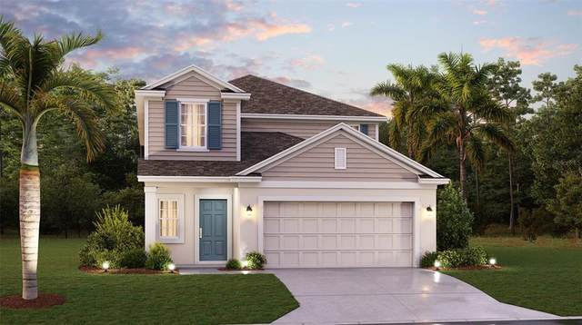 1058 Berry Lane, Davenport, FL 33837 (MLS #T3333853) :: Keller Williams Realty Select