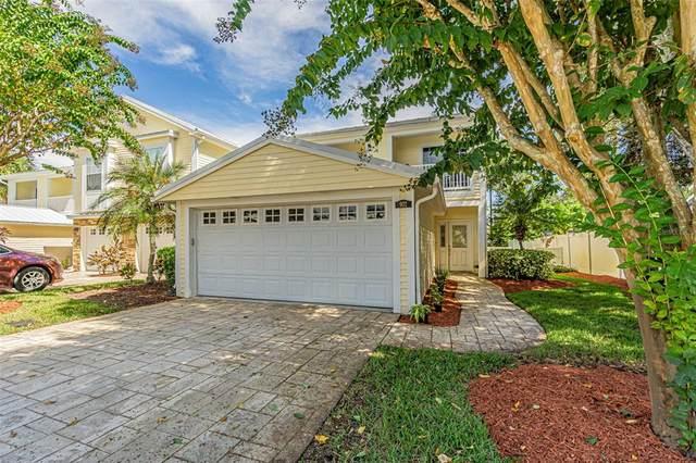 902 Woodbridge Court, Safety Harbor, FL 34695 (MLS #T3333893) :: Blue Chip International Realty
