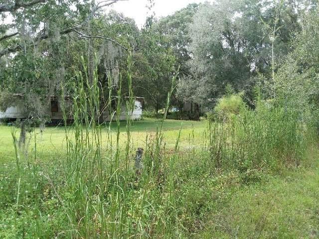 6633 Ravenwood, Wesley Chapel, FL 33544 (MLS #T3333919) :: Everlane Realty