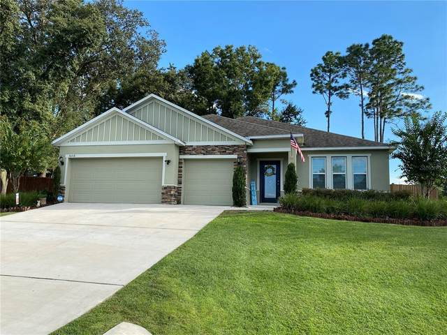 30318 Plymouth Creek Circle, Sorrento, FL 32776 (MLS #T3333943) :: Keller Williams Suncoast
