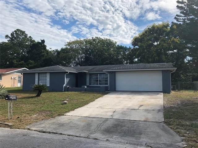 10904 Stamford Drive, Port Richey, FL 34668 (MLS #T3334029) :: Orlando Homes Finder Team