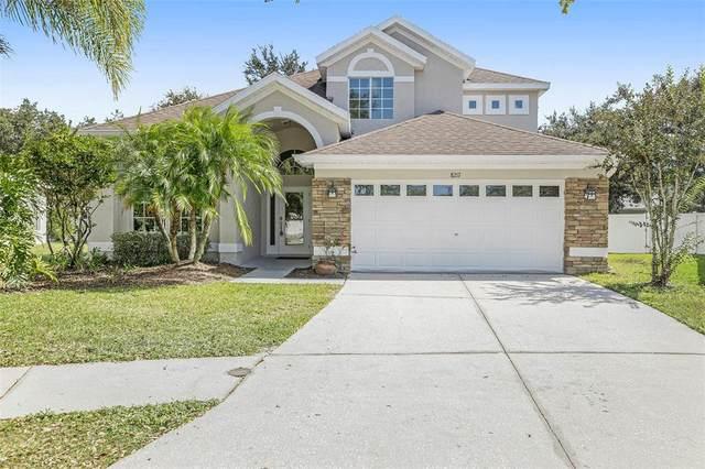 8217 Whistling Pine Way, Tampa, FL 33647 (MLS #T3334038) :: Orlando Homes Finder Team