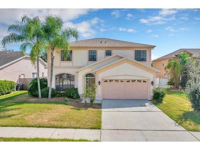10115 Vista Pointe Drive, Tampa, FL 33635 (MLS #T3334053) :: Orlando Homes Finder Team