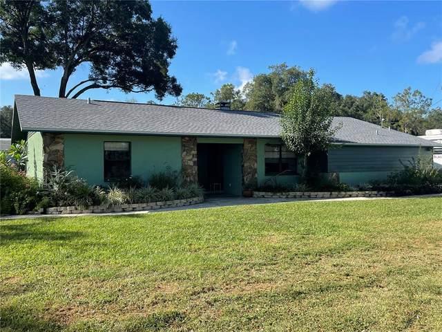 40844 Lynbrook Drive, Zephyrhills, FL 33540 (MLS #T3334058) :: Orlando Homes Finder Team