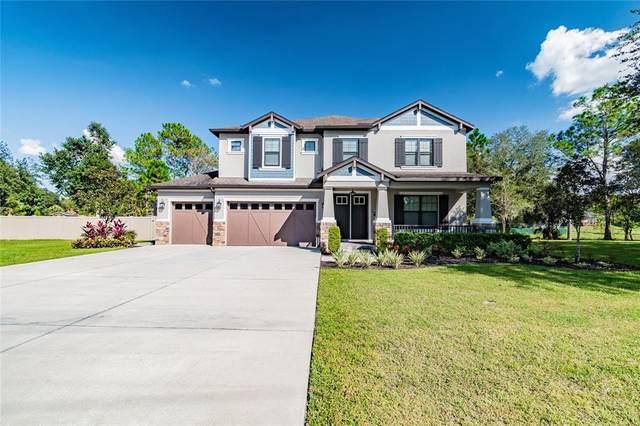 8714 Woodleaf Boulevard, Wesley Chapel, FL 33544 (MLS #T3334081) :: Blue Chip International Realty