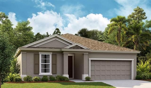 5532 Del Coronado Drive, Apollo Beach, FL 33572 (MLS #T3334162) :: Frankenstein Home Team