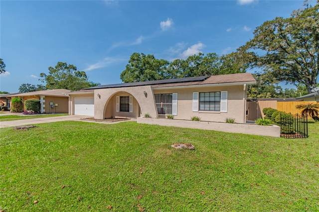 4219 Briarberry Lane, Tampa, FL 33624 (MLS #T3334180) :: Blue Chip International Realty
