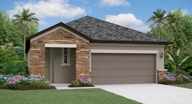 9800 Little Bluestem Drive, Land O Lakes, FL 34637 (MLS #T3334190) :: Orlando Homes Finder Team