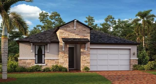 21700 Violet Periwinkle Drive, Land O Lakes, FL 34637 (MLS #T3334203) :: Charles Rutenberg Realty