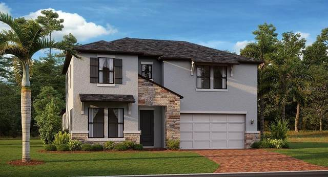 21680 Violet Periwinkle Drive, Land O Lakes, FL 34637 (MLS #T3334205) :: Orlando Homes Finder Team