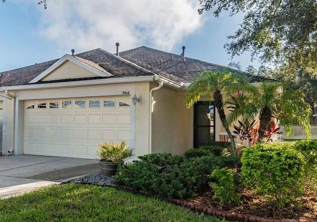 3616 Simonton Court, Land O Lakes, FL 34638 (MLS #T3334234) :: Griffin Group
