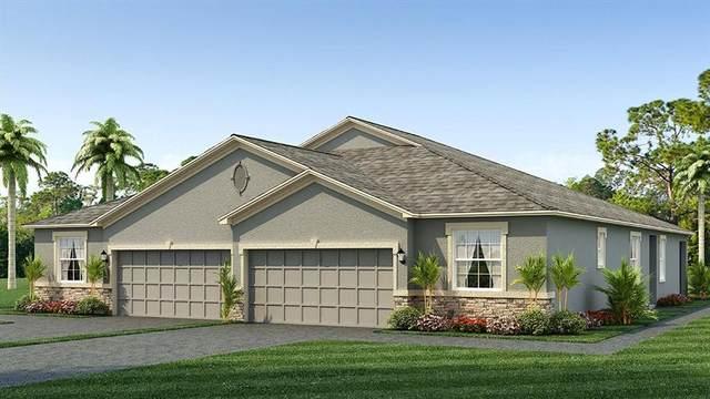 31145 Mango Fade Way, San Antonio, FL 33576 (MLS #T3334239) :: Everlane Realty