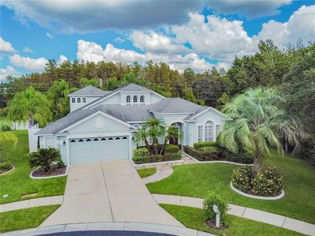 30647 Piercefield Court, Wesley Chapel, FL 33543 (MLS #T3334249) :: Cartwright Realty