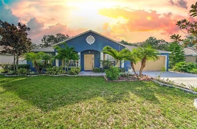 6714 Clair Shore Drive, Apollo Beach, FL 33572 (MLS #T3334277) :: Charles Rutenberg Realty