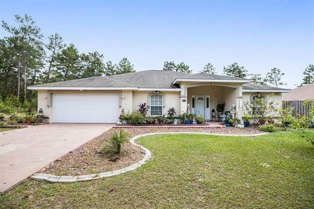 17082 SW 44TH Circle, Ocala, FL 34473 (MLS #T3334278) :: Griffin Group