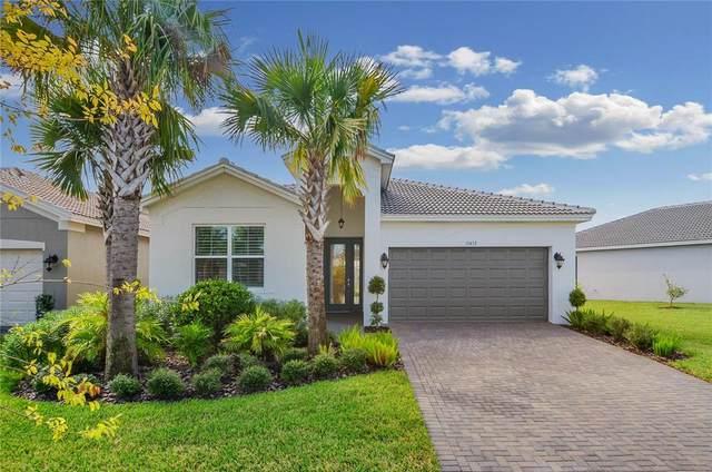 15452 Santa Pola Drive, Wimauma, FL 33598 (MLS #T3334313) :: McConnell and Associates