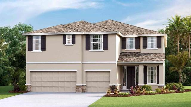 519 Spotted Slipper Place, Ruskin, FL 33570 (MLS #T3334322) :: Cartwright Realty