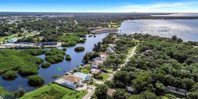 3138 Phoenix Avenue, Oldsmar, FL 34677 (MLS #T3334341) :: Burwell Real Estate