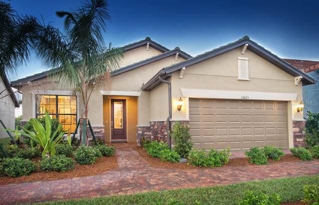 13623 Salinas Street, Venice, FL 34293 (MLS #T3334360) :: Charles Rutenberg Realty