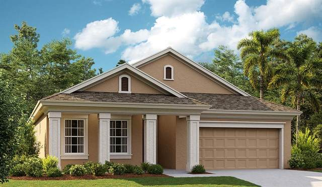 18091 Ramble On Way, Land O Lakes, FL 34638 (MLS #T3334396) :: Keller Williams Realty Select