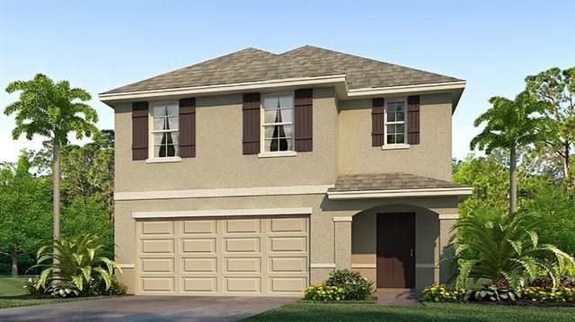 451 Sunlit Coral Street, Ruskin, FL 33570 (MLS #T3334420) :: Cartwright Realty