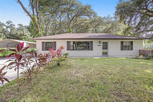 39540 Pretty Pond Road, Zephyrhills, FL 33540 (MLS #T3334514) :: Orlando Homes Finder Team