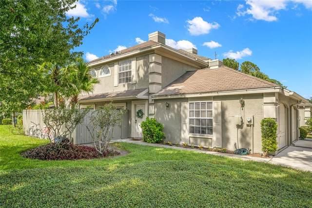 14102 Beauville Court, Tampa, FL 33624 (MLS #T3334523) :: Orlando Homes Finder Team