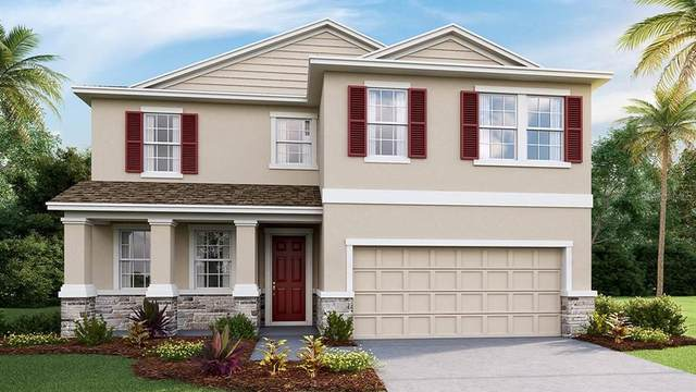 5419 Thistle Field Court, Wesley Chapel, FL 33545 (MLS #T3334537) :: Cartwright Realty