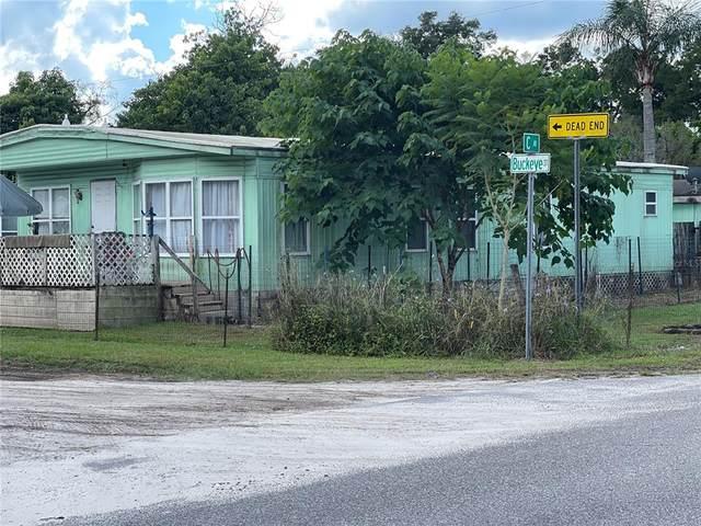 4721 Buckeye Street, Zephyrhills, FL 33542 (MLS #T3334565) :: The Nathan Bangs Group