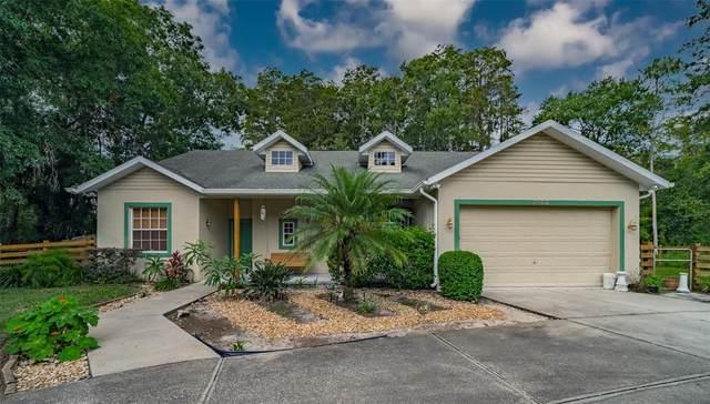 7435 Tanglewood Drive, New Port Richey, FL 34654 (MLS #T3334614) :: Lockhart & Walseth Team, Realtors