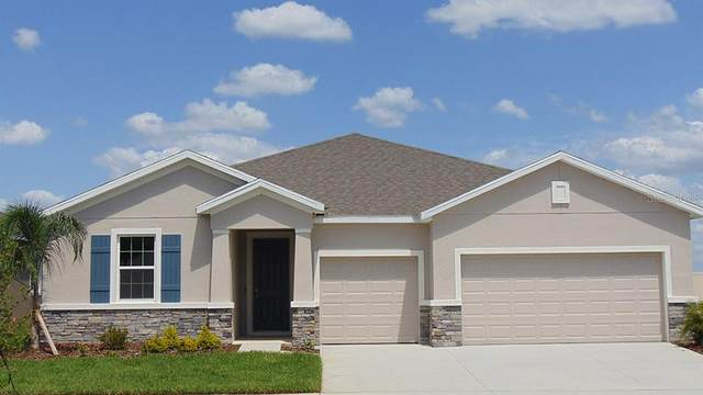 3508 Autumn Amber Drive, Spring Hill, FL 34609 (MLS #T3334633) :: Everlane Realty