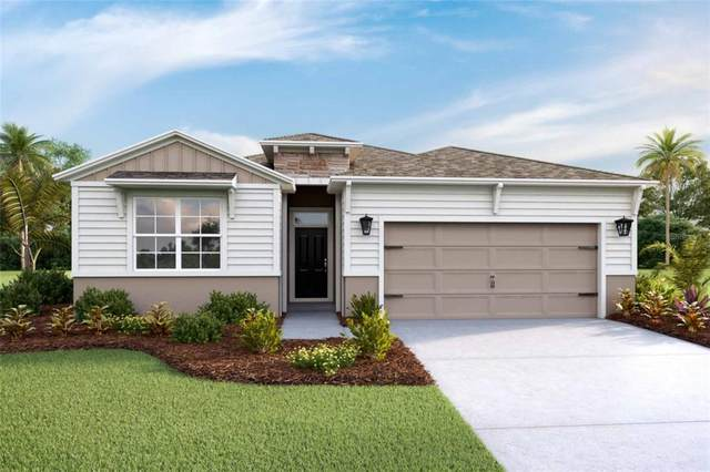 7907 Wheat Stone Drive, Zephyrhills, FL 33540 (MLS #T3334673) :: The Duncan Duo Team