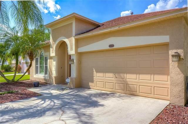 12529 Blazing Star Drive, Tampa, FL 33626 (MLS #T3334682) :: Everlane Realty