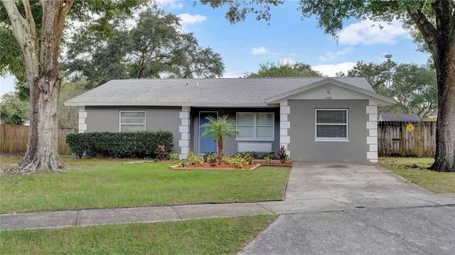 4008 Orange Street, Seffner, FL 33584 (MLS #T3334688) :: Delgado Home Team at Keller Williams