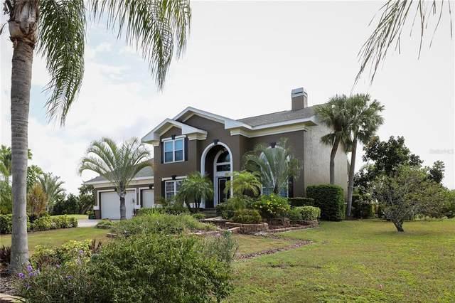 706 Bunker View Drive, Apollo Beach, FL 33572 (MLS #T3334723) :: Everlane Realty