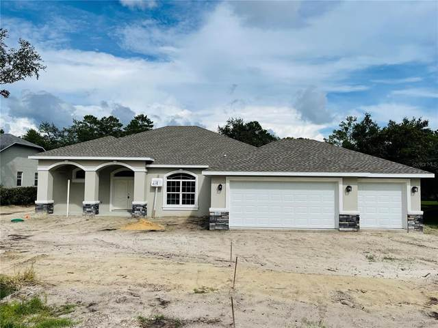 11294 Godwit Avenue, Weeki Wachee, FL 34613 (MLS #T3334736) :: Everlane Realty