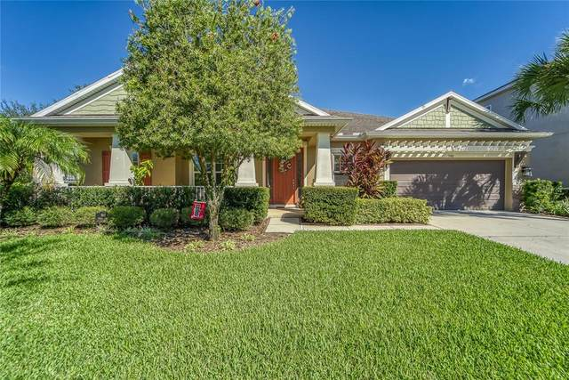 948 Heritage Groves Drive, Brandon, FL 33510 (MLS #T3334741) :: Team Bohannon